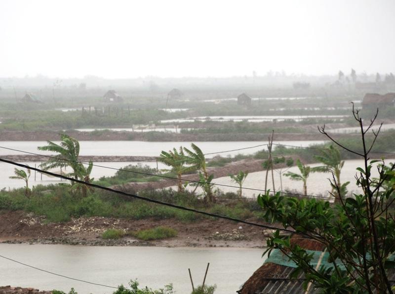 Từ 12h trưa nay, gió mưa bão đã bắt đầu mạnh dần lên tại Ninh Bình