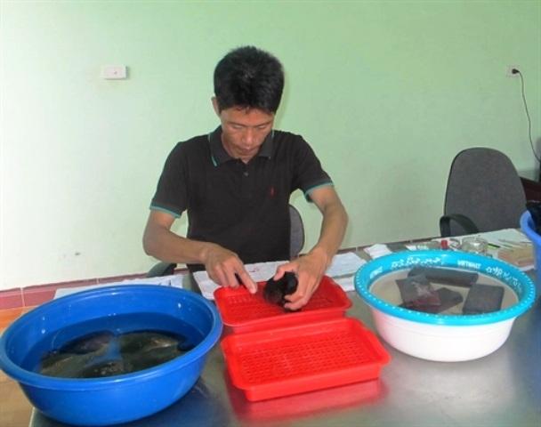 Khi thu hoạch, ngoài ngọc trai cho giá trị kinh tế chính thì vỏ và thịt trai cũng được tận dụng để làm hàng mỹ nghệ, thực phẩm hoặc thức ăn chăn nuôi.
