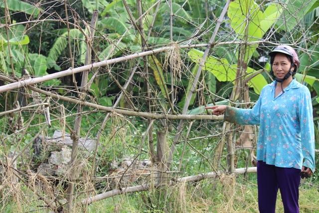 Mảnh đất cùng nhà bà cùng các con đang ở bỗng dưng bị xã, huyện cấp trích lục cho người khác