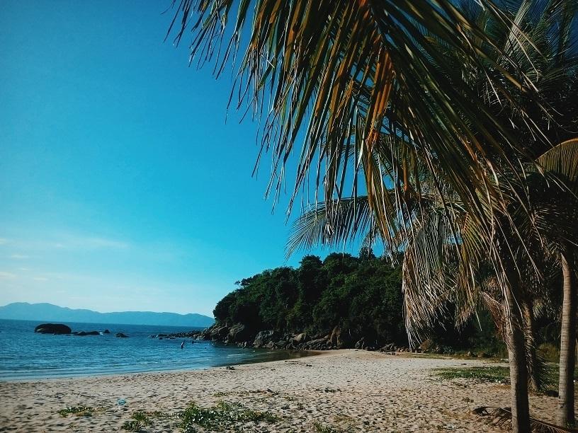 Những gam màu xanh tuyệt vời từ rặng dừa, cây cỏ, biển cả và bầu trời tại Tiên Sa