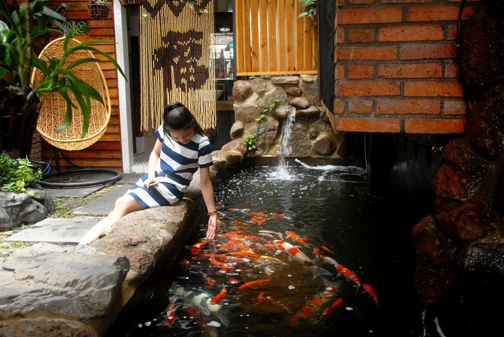 Nhiều người thích thú với việc chơi đùa với cá
