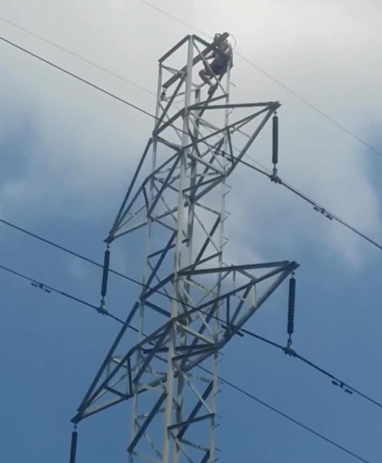 Người này liên tục di chuyển lên xuống phần ngọn của trụ điện khiến người dân đứng bên dưới thót tim (ảnh: bạn đọc cung cấp)