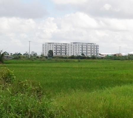 Khu nhà ở sinh viên tỉnh Bạc Liêu nhìn từ xa trông rất hoành tráng.