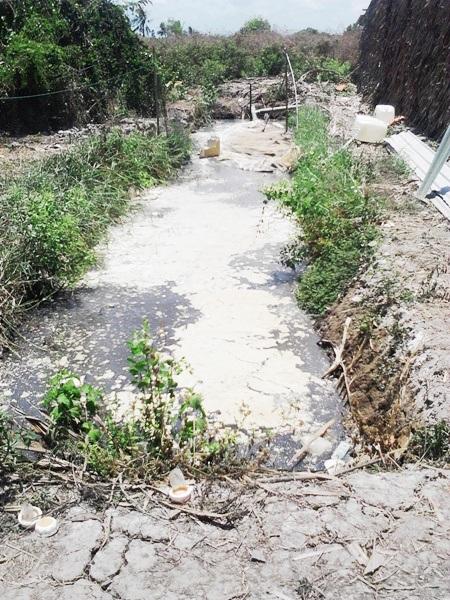 Toàn cảnh hầm biogas nơi xảy ra vụ ngạt khí khiến 3 người tử vong và nhiều người bị thương.