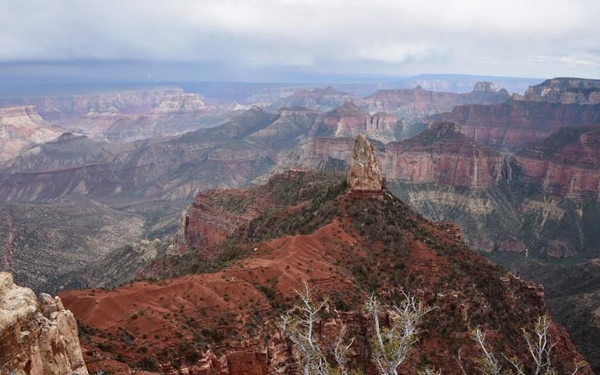 """""""Những thứ này có phải là đồ nhân tạo không?"""" Một du khách hỏi khi ghé thăm Vườn quốc gia Grand Canyon (Mỹ)."""