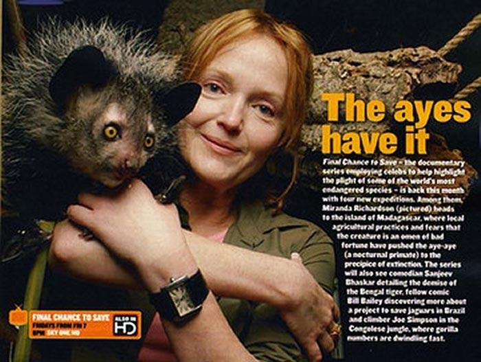 Hiện loài khỉ Aye Aye đang ở trong tình trạng cực kỳ nguy cấp. Nếu không được bảo vệ, trong thời gian không xa, loài khỉ Aye Aye sẽ chỉ còn xuất hiện trong sách vở.