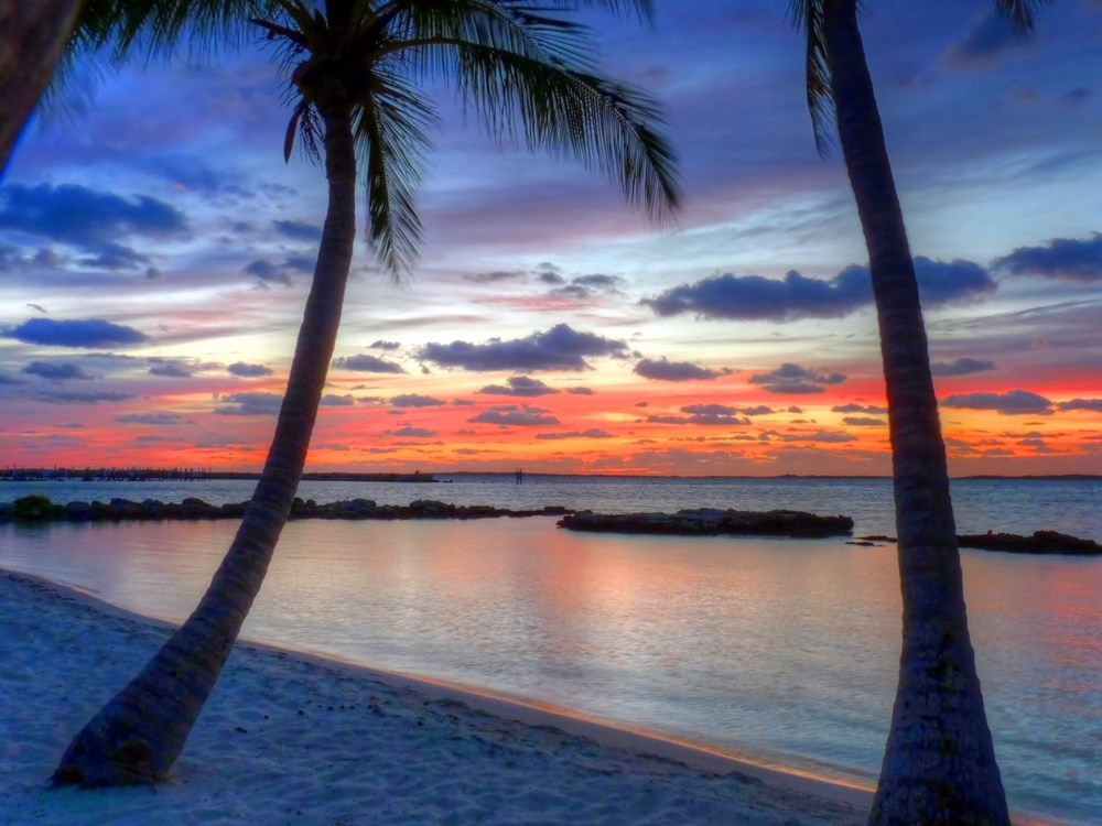 Cảng Marsh (Bahamas): Thành phố lớn thứ 3 của Bahamas được công ty hàng không XOJET bình chọn là điểm đến lý tưởng cho chuyên cơ riêng.