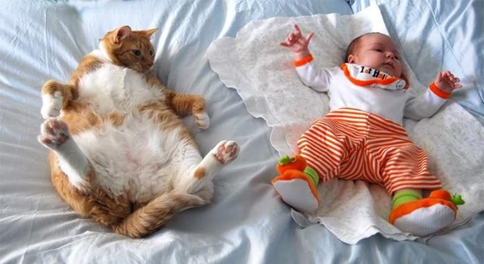 Đến cả tư thế ngủ cũng giống nhau đến vậy