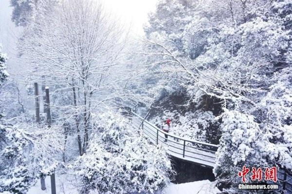 Tuyết phủ trắng Thái Châu, tỉnh Chiết Giang, Trung Quốc