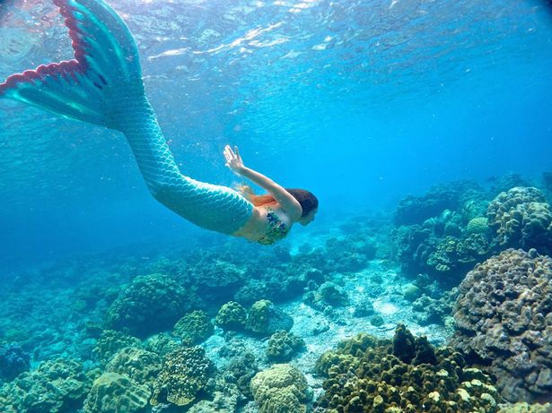 Gặp nàng tiên cá xinh đẹp có thực ngoài đời thường - 5