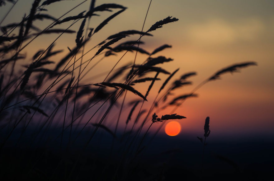 Vẻ đẹp huyền diệu của đất trời dưới ánh hoàng hôn - 1