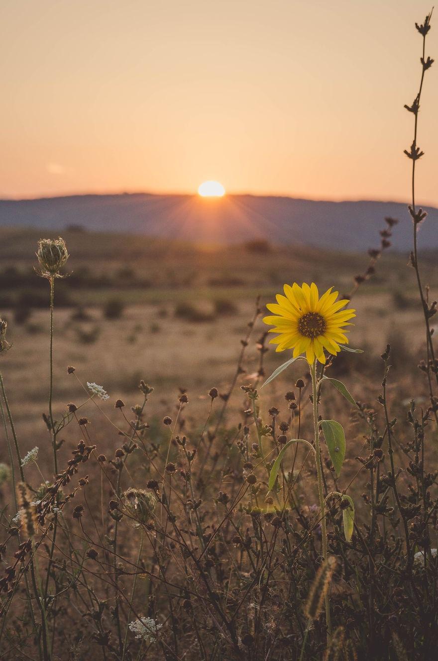 Vẻ đẹp huyền diệu của đất trời dưới ánh hoàng hôn - 11