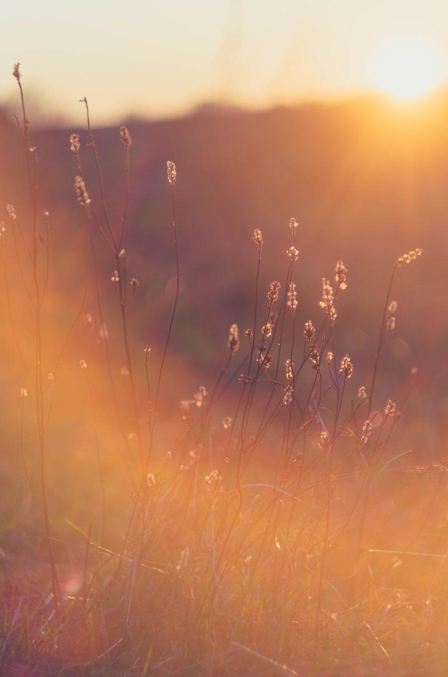Vẻ đẹp huyền diệu của đất trời dưới ánh hoàng hôn - 6
