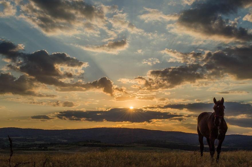 Vẻ đẹp huyền diệu của đất trời dưới ánh hoàng hôn - 8