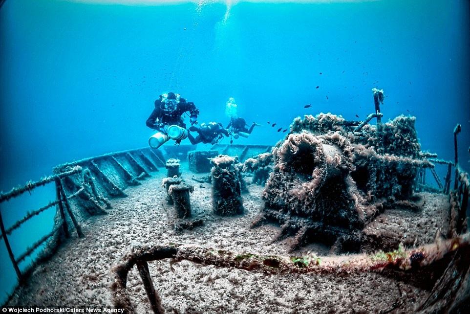 """Vẻ đẹp kỳ bí của những """"nấm mồ"""" dưới đáy đại dương - 10"""