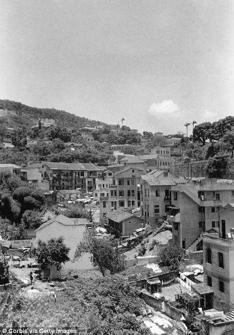 Những ngôi nhà mới xây được dựng lên bên sườn đồi ở Rio.