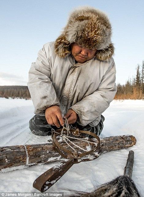Ion, thợ săn chó sói giỏi nhất vùng, bên chiếc bẫy thủ công làm theo kiểu truyền thống