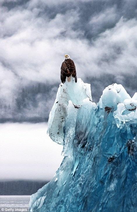 Tảng băng cổ nhất thế giới hình thành từ hơn 30.000 năm trước.