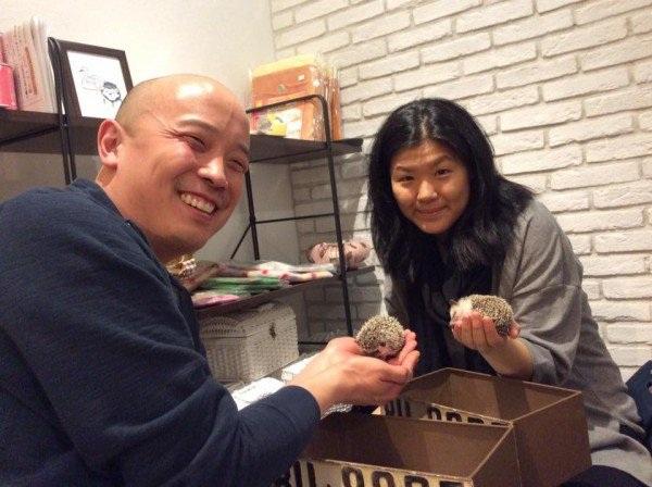 """Nhật Bản mở quán """"cafe nhím"""" đầu tiên trên thế giới - 3"""