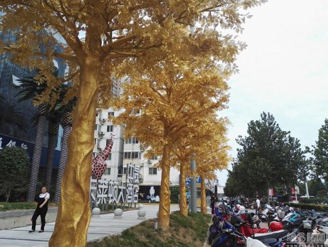 Hiện chưa ai lên tiếng xác nhận về việc cây mạ vàng hay phủ lớp sơn màu như vậy