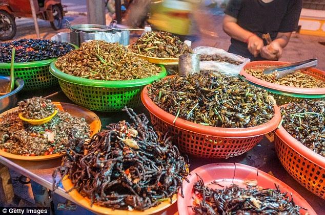 Phiên chợ truyền thống bày bán la liệt đủ mọi loại côn trùng