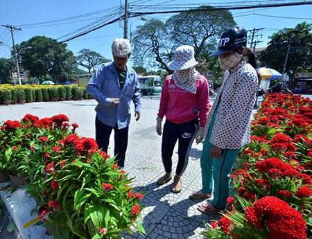 Chợ hoa xuân ở công viên Gia Định (quận Phú Nhuận) cũng bắt đầu tấp nập