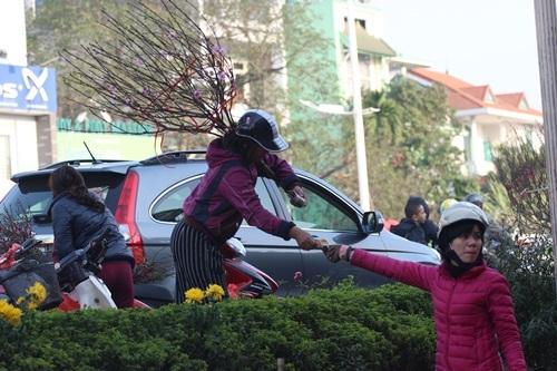 Hoa đào vẫn còn nhiều hai bên phố, giá có rẻ hơn những ngày trước do nhiều chủ hàng muốn nhanh chóng để ra về.