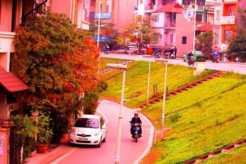 Hà Nội đẹp ngỡ ngàng trong tiết giao mùa tháng 3 - 11