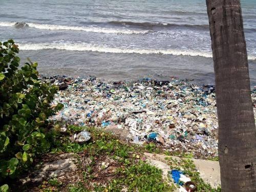 """Du lịch Bình Thuận lên tiếng về việc rác """"bao vây"""" Mũi Né - 3"""
