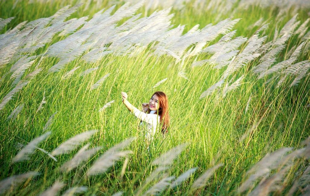 Chiêm ngưỡng cánh đồng cỏ lau trắng muốt bên dòng sông Lam - 8