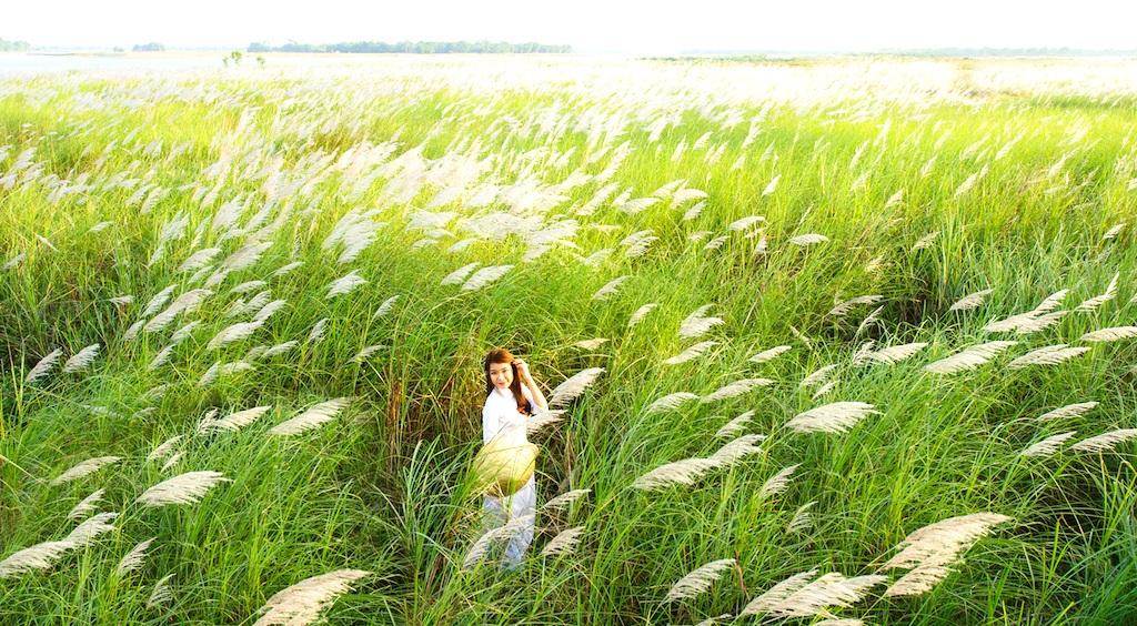 Chiêm ngưỡng cánh đồng cỏ lau trắng muốt bên dòng sông Lam - 7