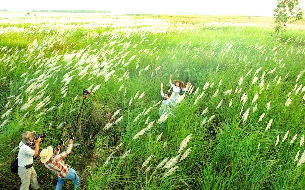 Chiêm ngưỡng cánh đồng cỏ lau trắng muốt bên dòng sông Lam - 13