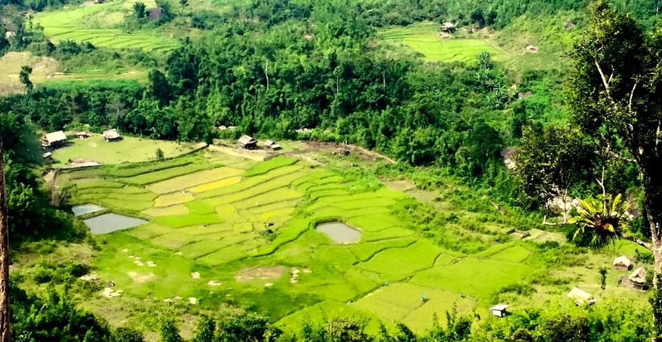 Sững sờ trước vẻ đẹp ruộng bậc thang ở miền Tây xứ Nghệ - 25