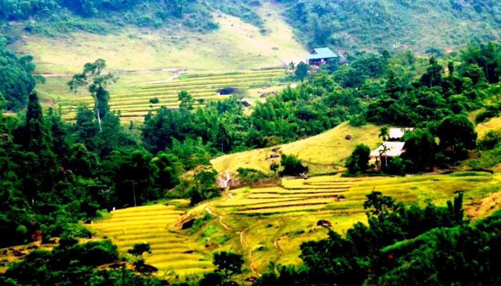 Sững sờ trước vẻ đẹp ruộng bậc thang ở miền Tây xứ Nghệ - 9