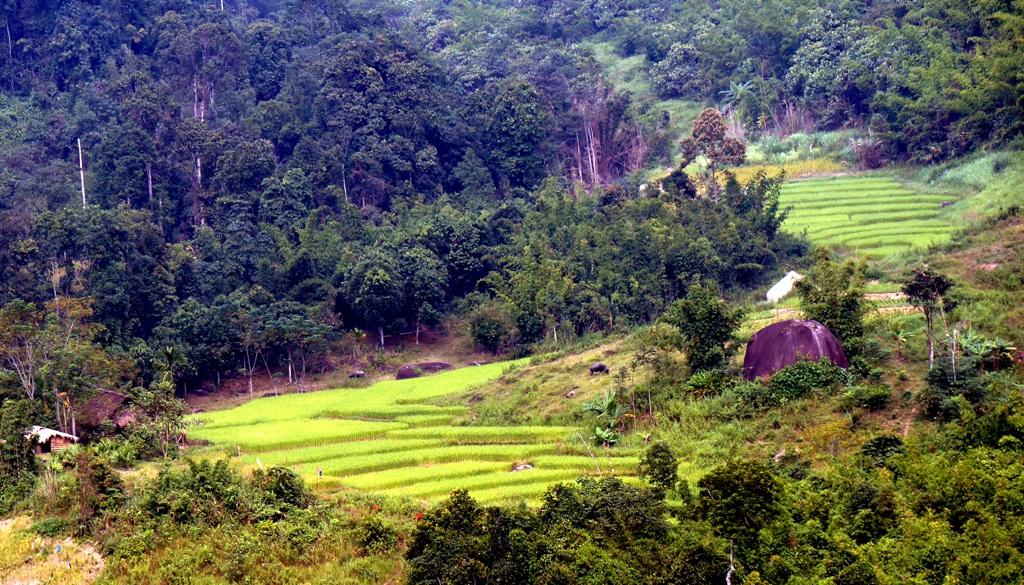 Sững sờ trước vẻ đẹp ruộng bậc thang ở miền Tây xứ Nghệ - 16
