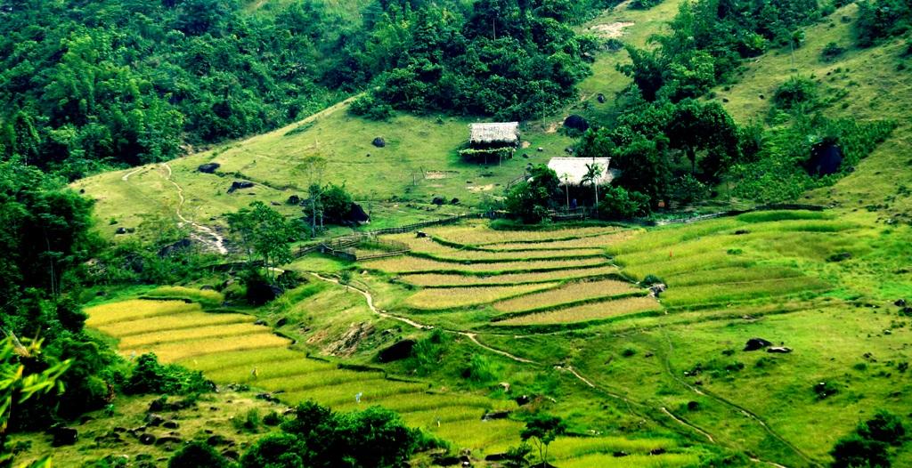 Sững sờ trước vẻ đẹp ruộng bậc thang ở miền Tây xứ Nghệ - 8