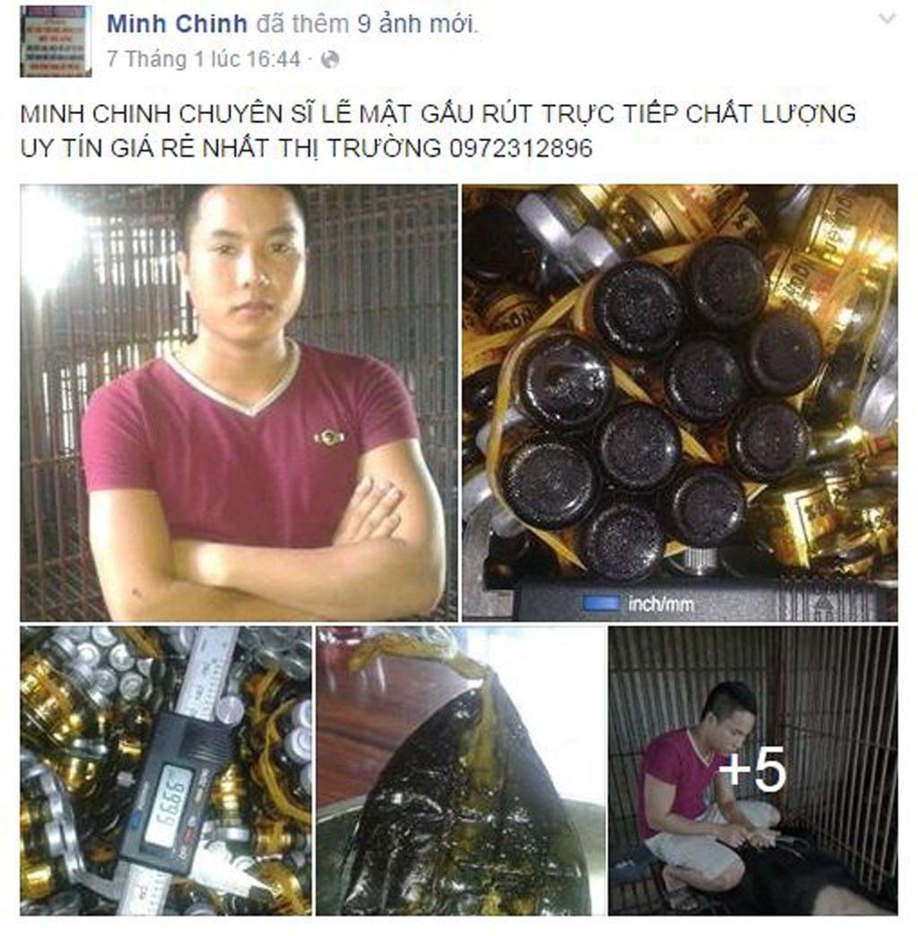 Ngày 7/1, Chinh đăng lên Facebook loạt ảnh gấu và mật gấu. Chinh rao bán và khẳng định hàng chất lượng, uy tín.