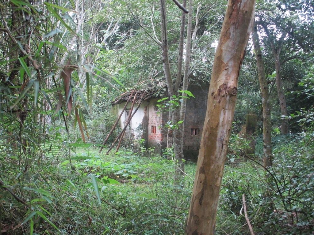 Căn nhà của một dân sau khi qua đời bị bỏ hoang.