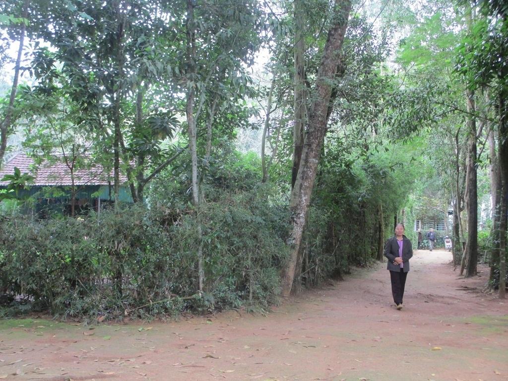 Bà Châu Thị Lan đứng trước con đường vào xóm mà các hộ dân từng sinh sống.