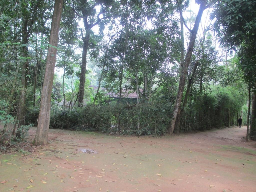 Ngôi làng 12 hộ dân sinh sống bao đời nay.
