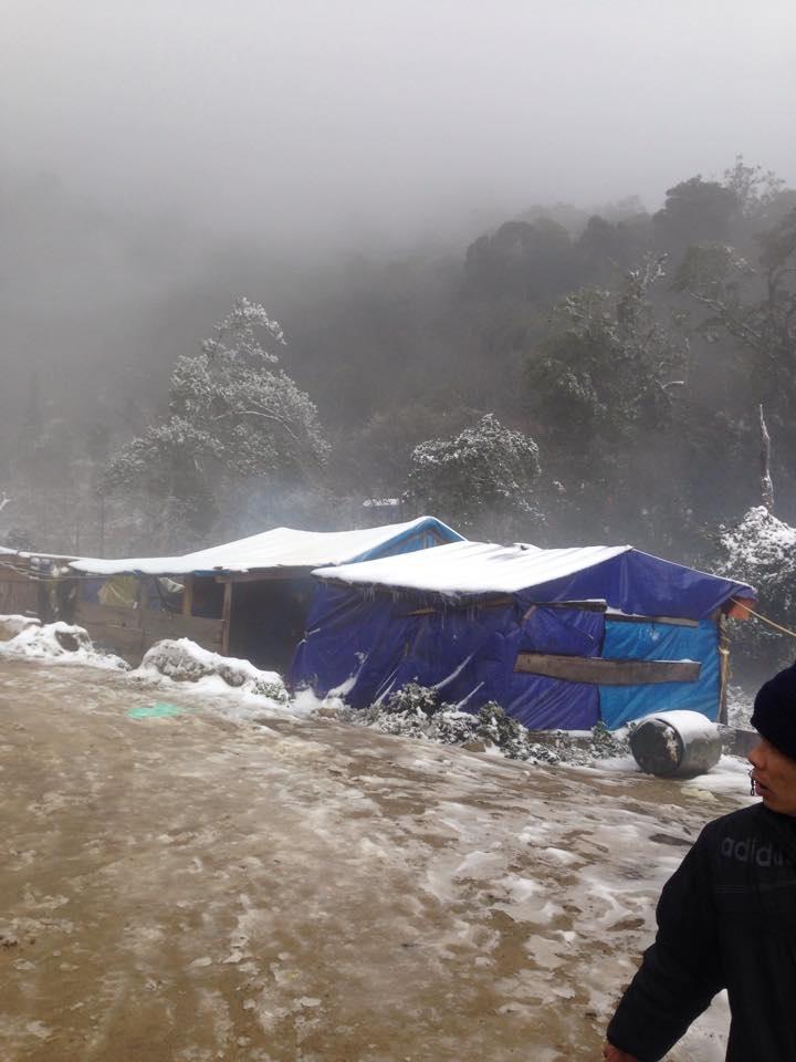 Nghệ An: Tuyết phủ dày hơn 30cm ở Buộc Mú - 2