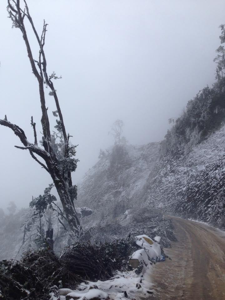 Nghệ An: Tuyết phủ dày hơn 30cm ở Buộc Mú - 5