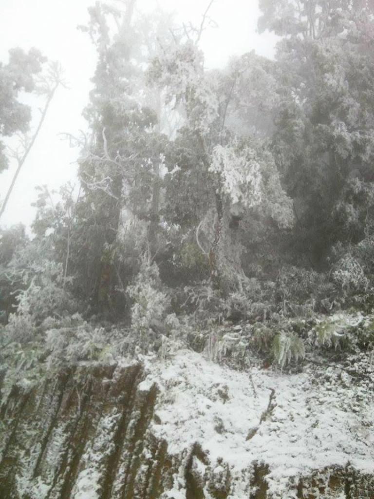 Nghệ An: Tuyết phủ dày hơn 30cm ở Buộc Mú - 16