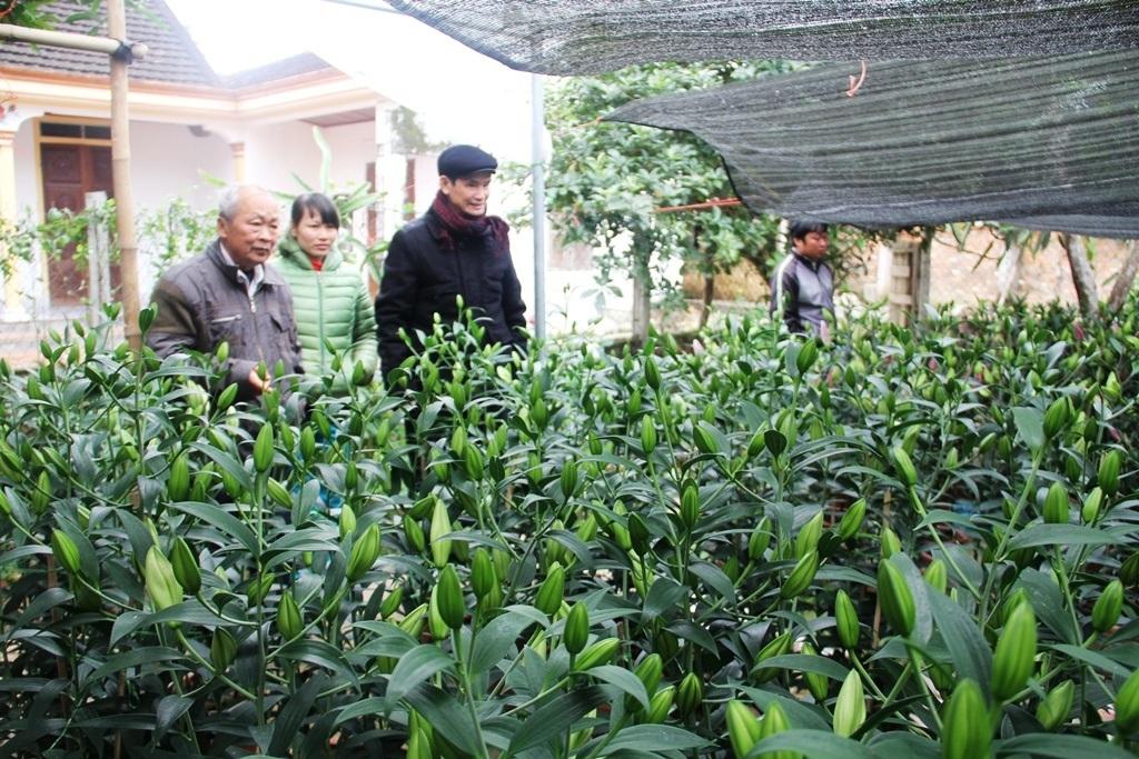 Nhiều người dân có mặt tại vườn hoa ông Bình để mua hoa.
