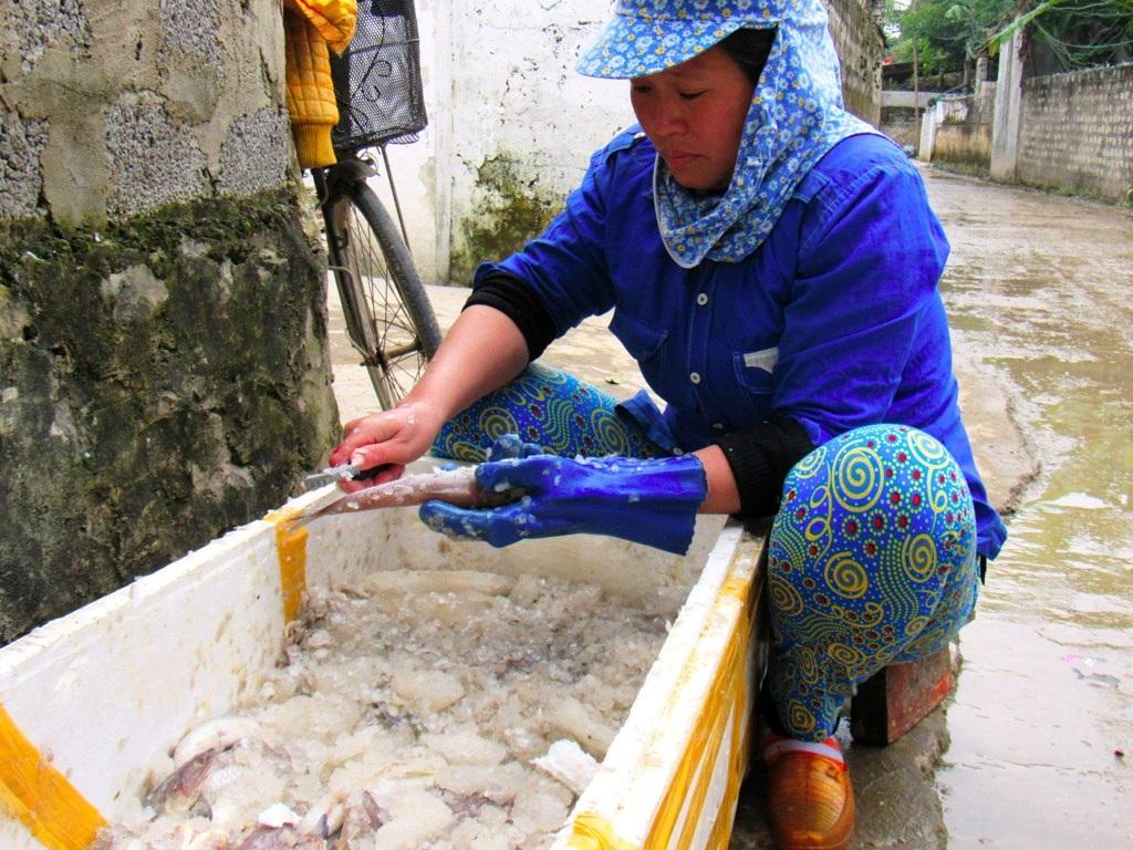 Chị Lê Thị Tuyết ( Diễn Bích, Diễn Châu) đang cạo vảy cho cá thực, một loại cá rất được ưa chuộng. Công đoạn này rất quan trọng trước khi cho cá lên lò nướng.