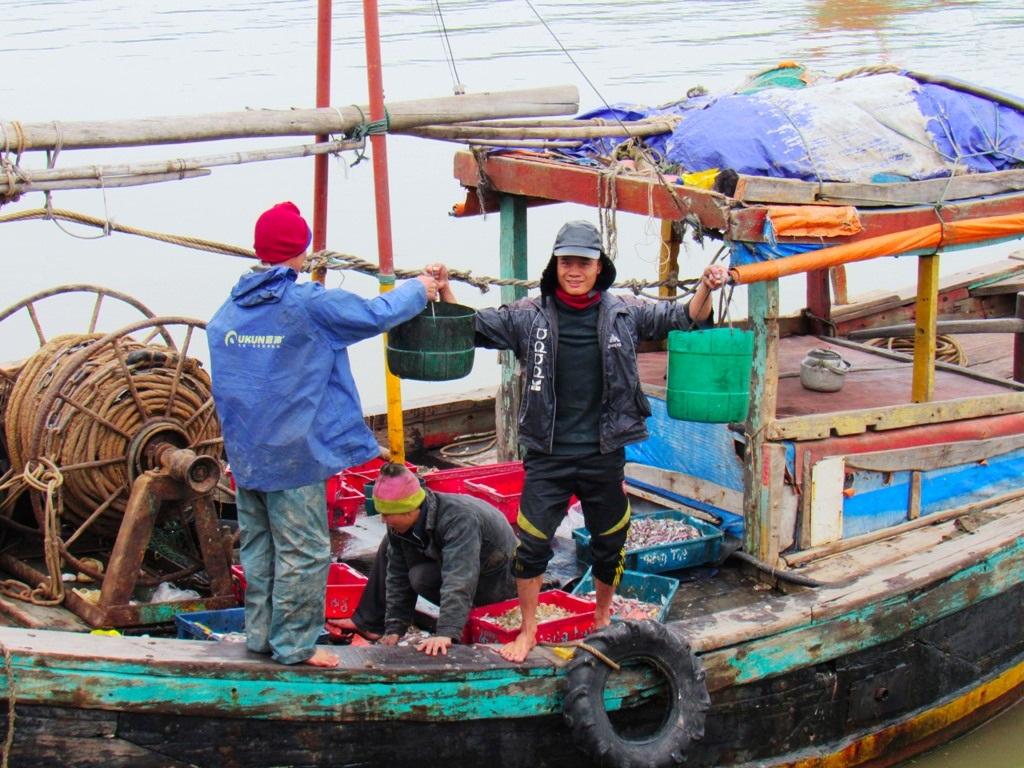 Người dân nơi đây cho hay, dịp Tết này lượng cá, mực và các loại hải sản tiêu thụ lớn hơn ngày thường nên những làng nghề đi biển luôn tấp nập và tranh thủ làm để có hàng bán.