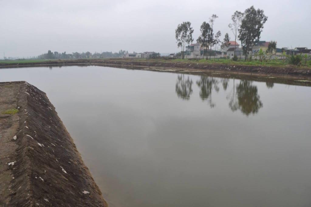 Hồ nước nơi 3 cháu nhỏ đuối nước thương tâm ở xã Diễn Quảng, huyện Diễn Châu.