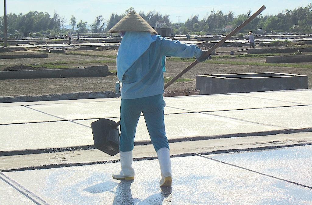 Xã An Hòa có tới 50% là làm muối, đây là một nghề đã ăn sâu vào người của những diêm dân nơi đây.