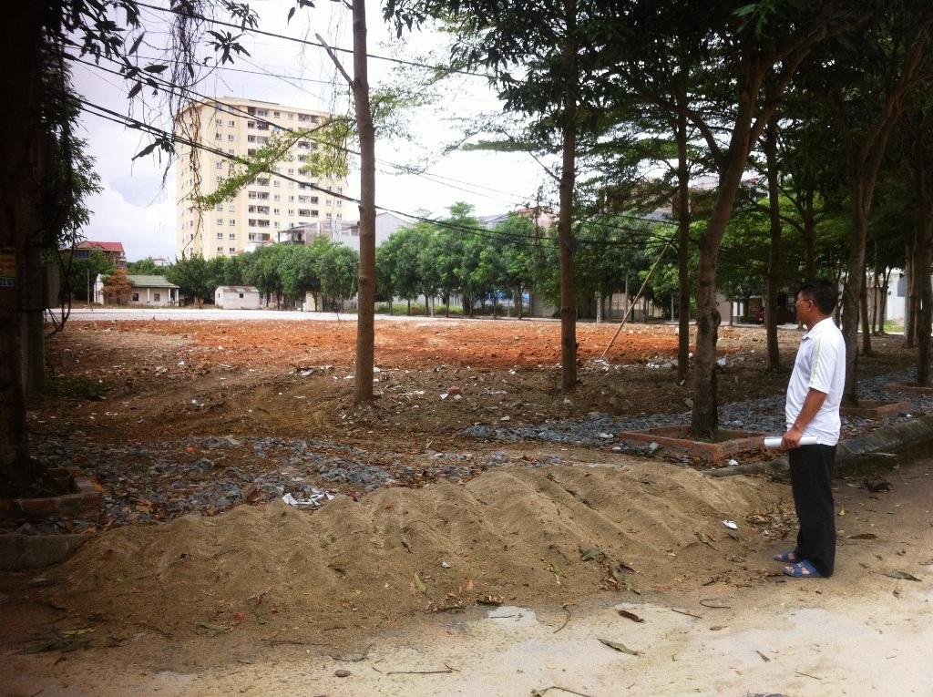 Hàng cây xanh đã lớn bao quanh khuôn viên