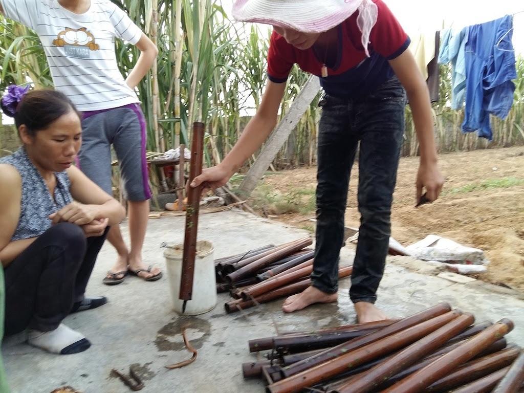 Nhọc nhằn nghề thả trúm bắt lươn - 9